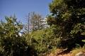 kokilin, playa de vargas, fotos de las islas canairias